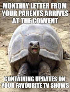 Happy-Excited-Tortoise-1-227x300_MMeme64_JUL16